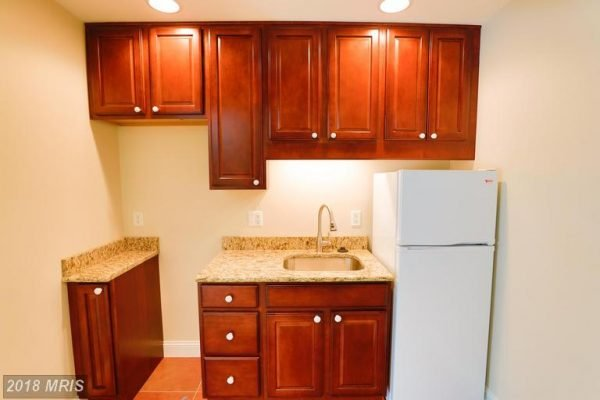 Lower Level with wet bar and refrigerator